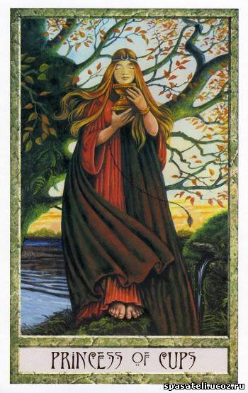 Принцесса кубков - Druidcraft Tarot