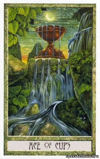 Туз кубков - Druidcraft Tarot